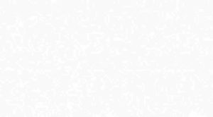 Панель ПВХ Белая матовая 0.25 х 3 м.